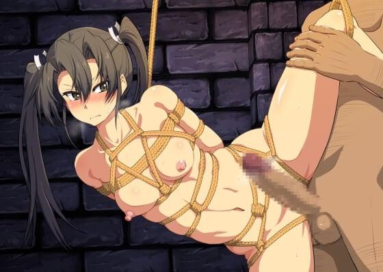 【エロ画像】 美少女ヒロイン達を拘束レイプ!! 抵抗できないようにして陵辱しまくる二次エロ画像www part63